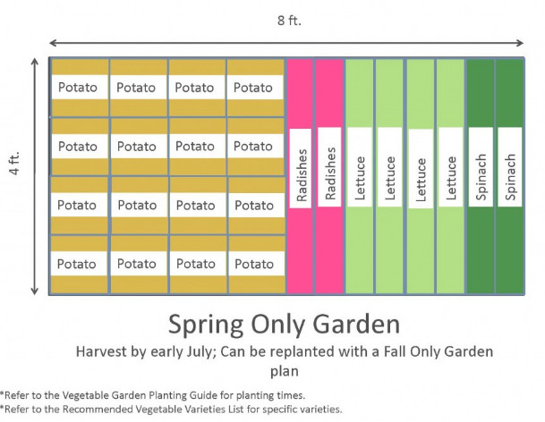 4x8 Raised Bed Vegetable Garden Layout with Several Ideas to Arrange the Plants 4