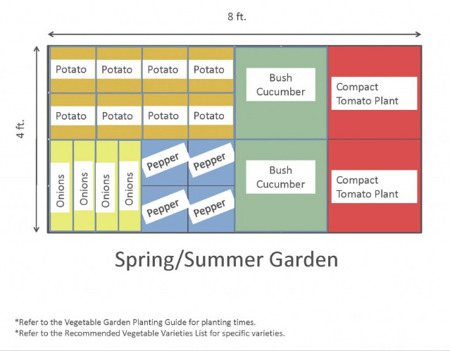 4x8 Raised Bed Vegetable Garden Layout with Several Ideas to Arrange the Plants 7